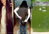 grow hair faster